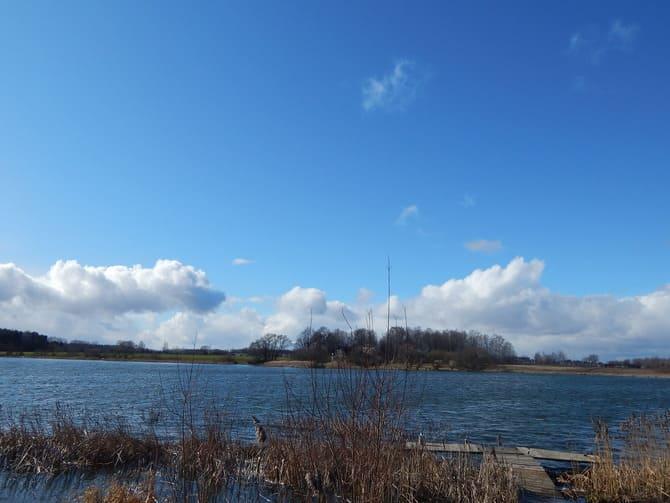 Продажа дома, Сморгонский район, на берегу озера деревня Подберезы - фото 7